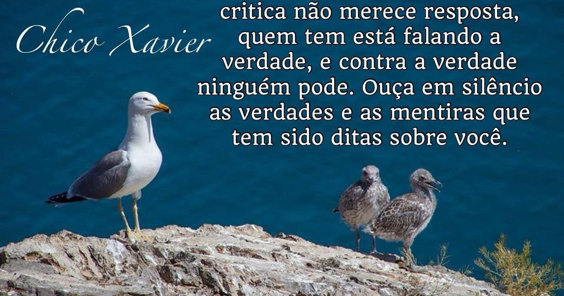 REFLEXÕES PARA TODOS: Mensagem De Chico Xavier