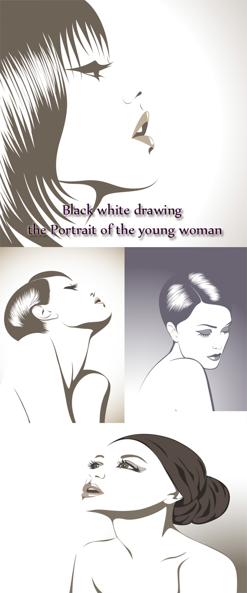 Stock: Black white drawing - the Portrait of the young woman