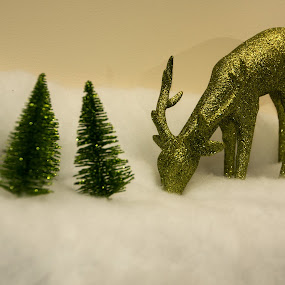Green Deer by Camruin Kilsek - Public Holidays Christmas