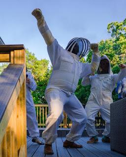 TOP PHOTOS - PLC - BEE KEEPING + SUITS - bee%2Bdance.jpg