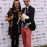 OIC - ENTSIMAGES.COM - Amelia Harry and Nick Henderson at the  PupAid Puppy Farm Awareness Day 2015 London 5th September 2015 Photo Mobis Photos/OIC 0203 174 1069