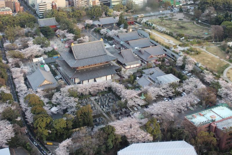 2014 Japan - Dag 3 - marjolein-IMG_0428-0281.JPG