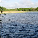 Marche des étangs 2013