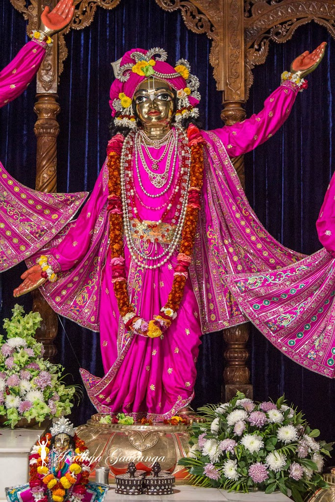 ISKCON Mayapur Deity Darshan 18 Jan 2017 (7)