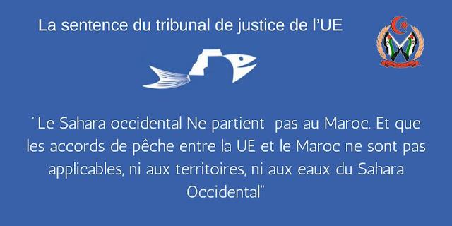L'arrêt de la CJUE sur leur accord de pêche: Marcellesi exhorte l'UE à revoir ses relations avec le Maroc