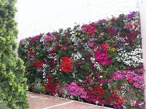 mur végétal HOTEL PORTES PALACE AG-MAMAS XALKI DIKI grèce