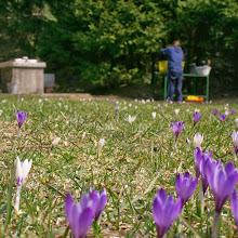 Priprave na NOT, Črni dol 2007 - IMG_4467.jpg
