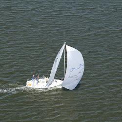 Coastal Flight November 2, 2013 116