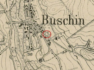 buschin.jpg