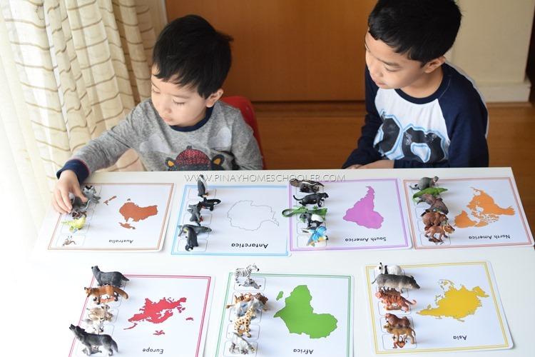 Animals Around the World Activity