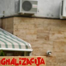 Področni mnogoboj, Sežana 2007 - P0207131.JPG