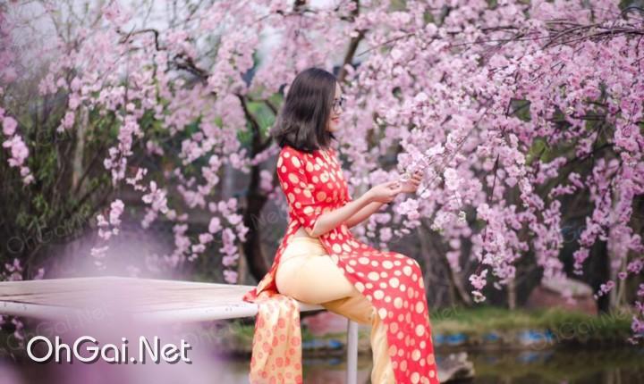 facebook gai xinh tran to nhu - ohgai.net
