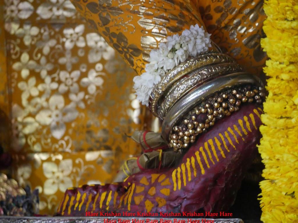 Radha Govind Devji Deity Darshan 28 Mar 2016 (5)