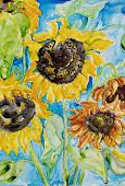 sunflowers.jpg