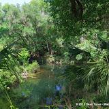 04-04-12 Hillsborough River State Park - IMGP9693.JPG