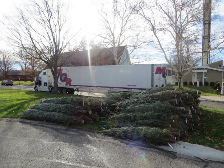 Christmas Tree Lot - IMG_1824.JPG