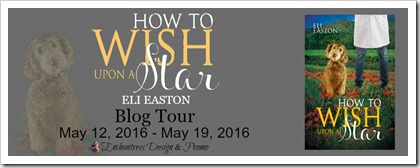 How to Wish Upon a Star Blog Tour Banner