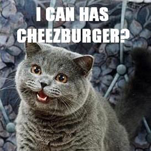 I Can Has Cheezburger image