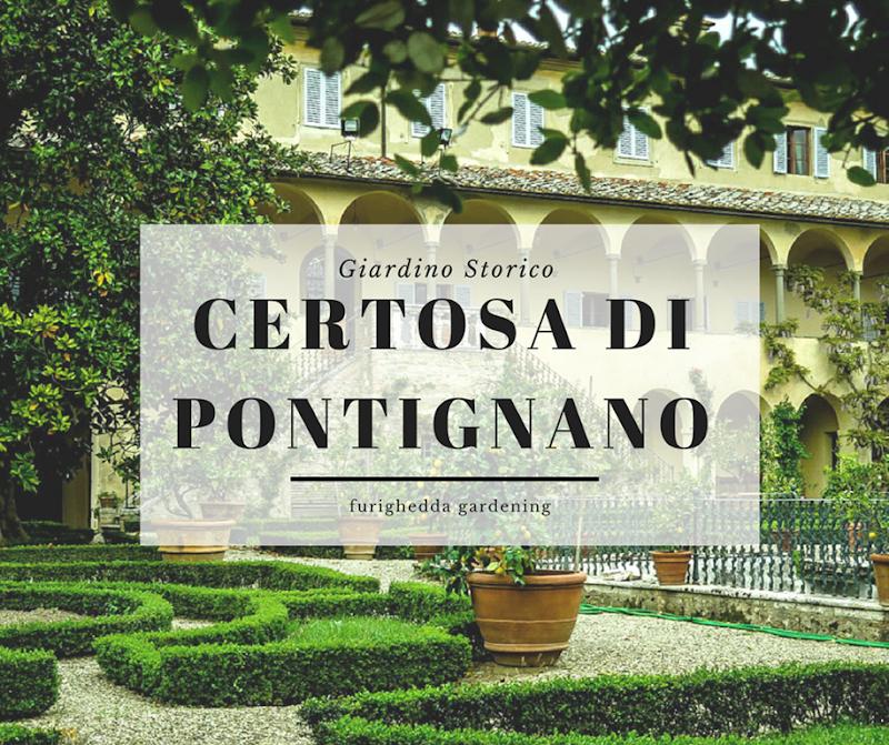 CERTOSA PONTIGNANO cover
