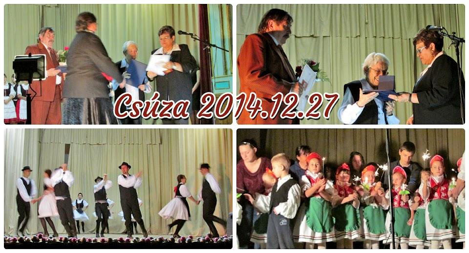 Csúza 2014.12.27
