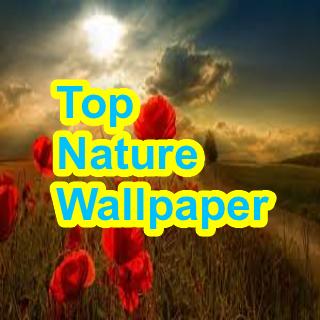 Top Nature Wallpaper