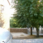 img0026.jpg