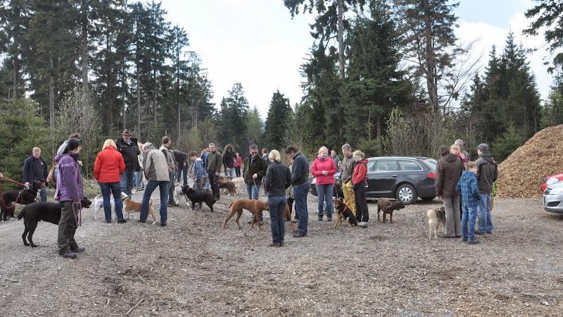 2014-04-13 - Waldführung am kleinen Waldstein (von Uwe Look) - DSC_0393.JPG
