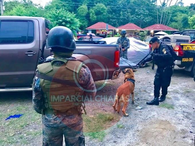 Operativos de la DEA-Guatemala Causan Efecto Cucaracha en Territorio Mexicano
