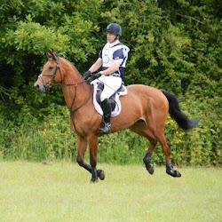 Kilronan Equestrian Centre's profile photo
