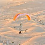 DSC_9438 Vliegen, in de woestijn.jpg