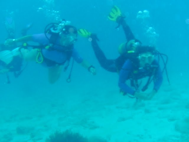 Bonaire 2011 - PICT0246.JPG