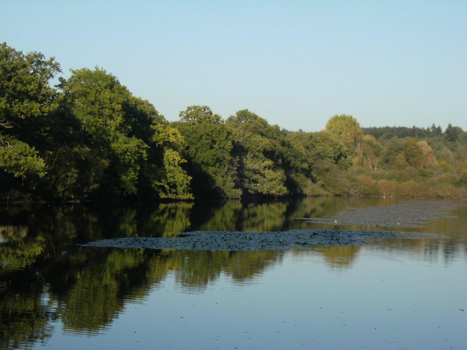DSCF0029 Broadhurst Lake