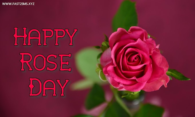 Happy rose day pic with name, Rose day images download by Fast2smsxyz