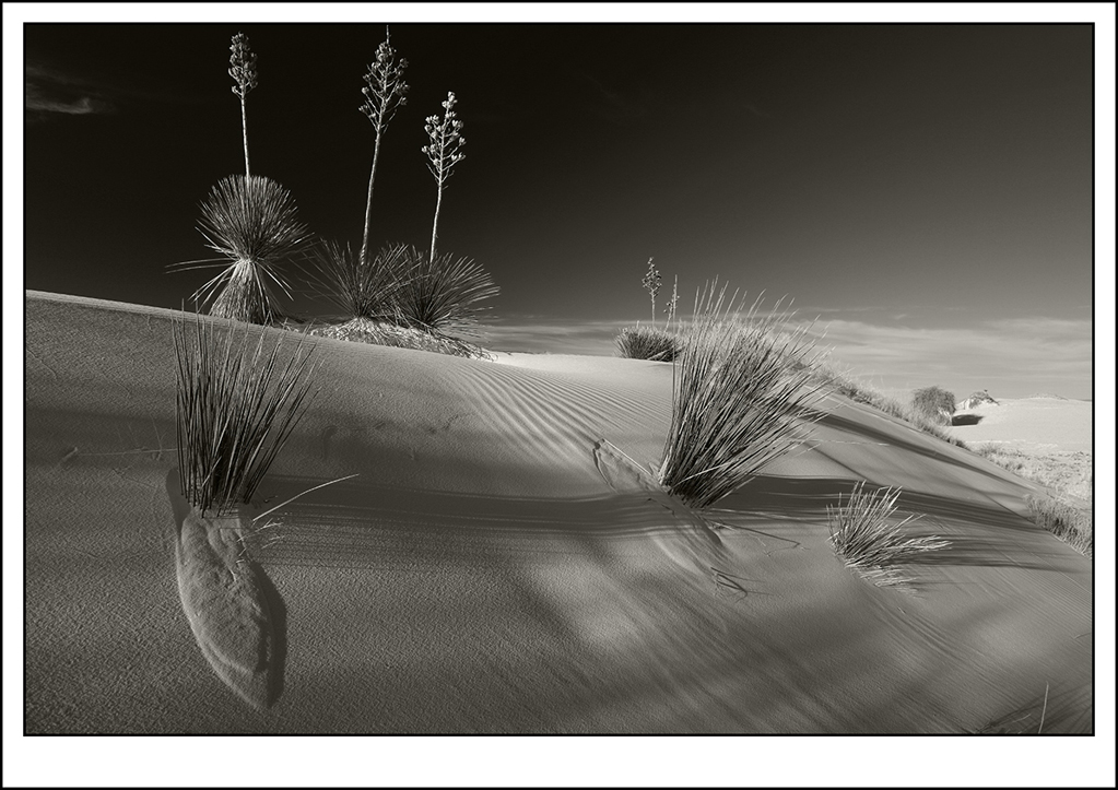 """Honorable Mention - Tim Stenning for """"Sands #1"""""""
