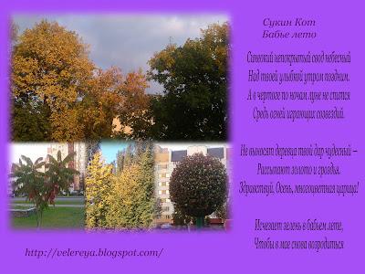 Бабье лето - Золотая осень....