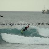 _DSC1903.thumb.jpg