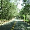 01_the_road_in.jpg