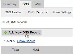 Add New DNS Record button is selected.