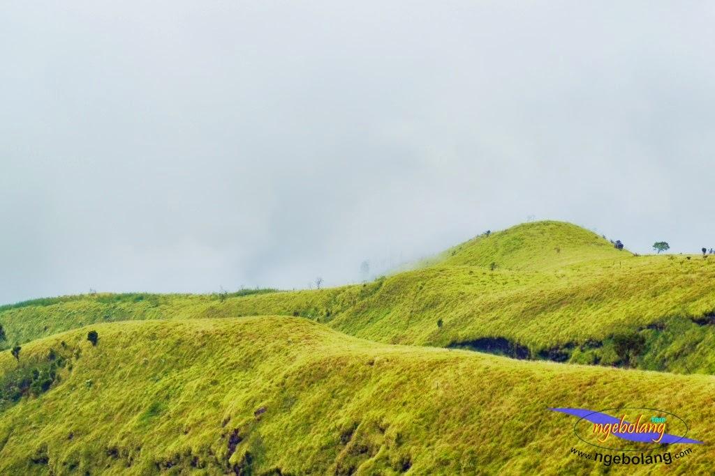 ngebolang gunung sumbing 1-4 agustus 2014 nik 47