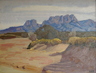 """Organ Mountains"""