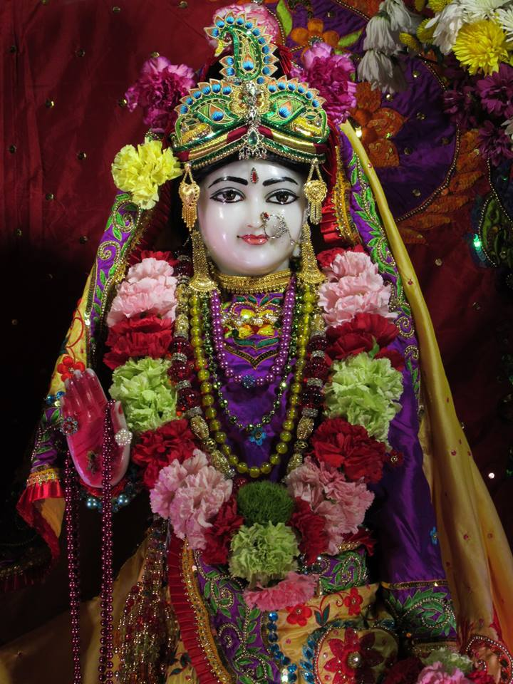 ISKCON Chicago Deity Darshan 22 Jan 2016  (18)