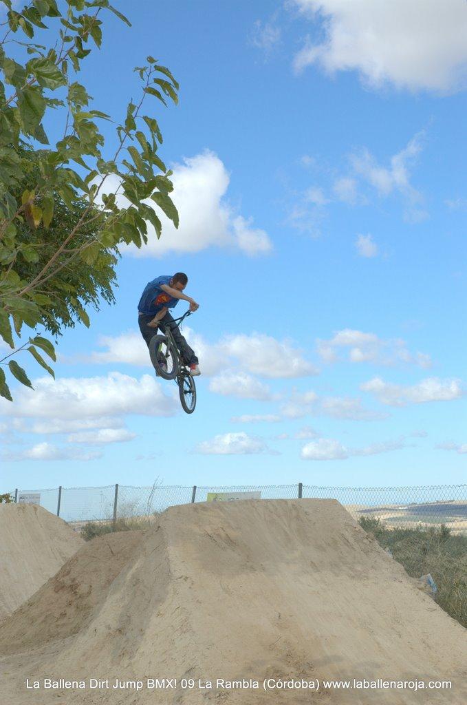 Ballena Dirt Jump BMX 2009 - BMX_09_0007.jpg