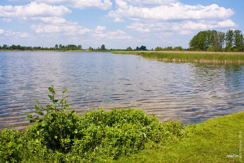 Озеро Домашнє, село Любохини