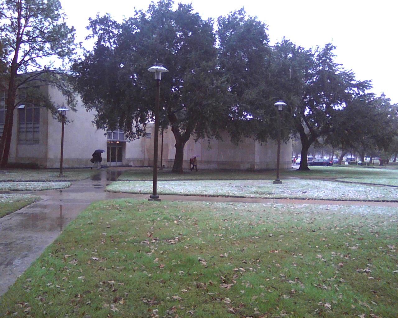 Snow Day - Photo12041149_1.jpg