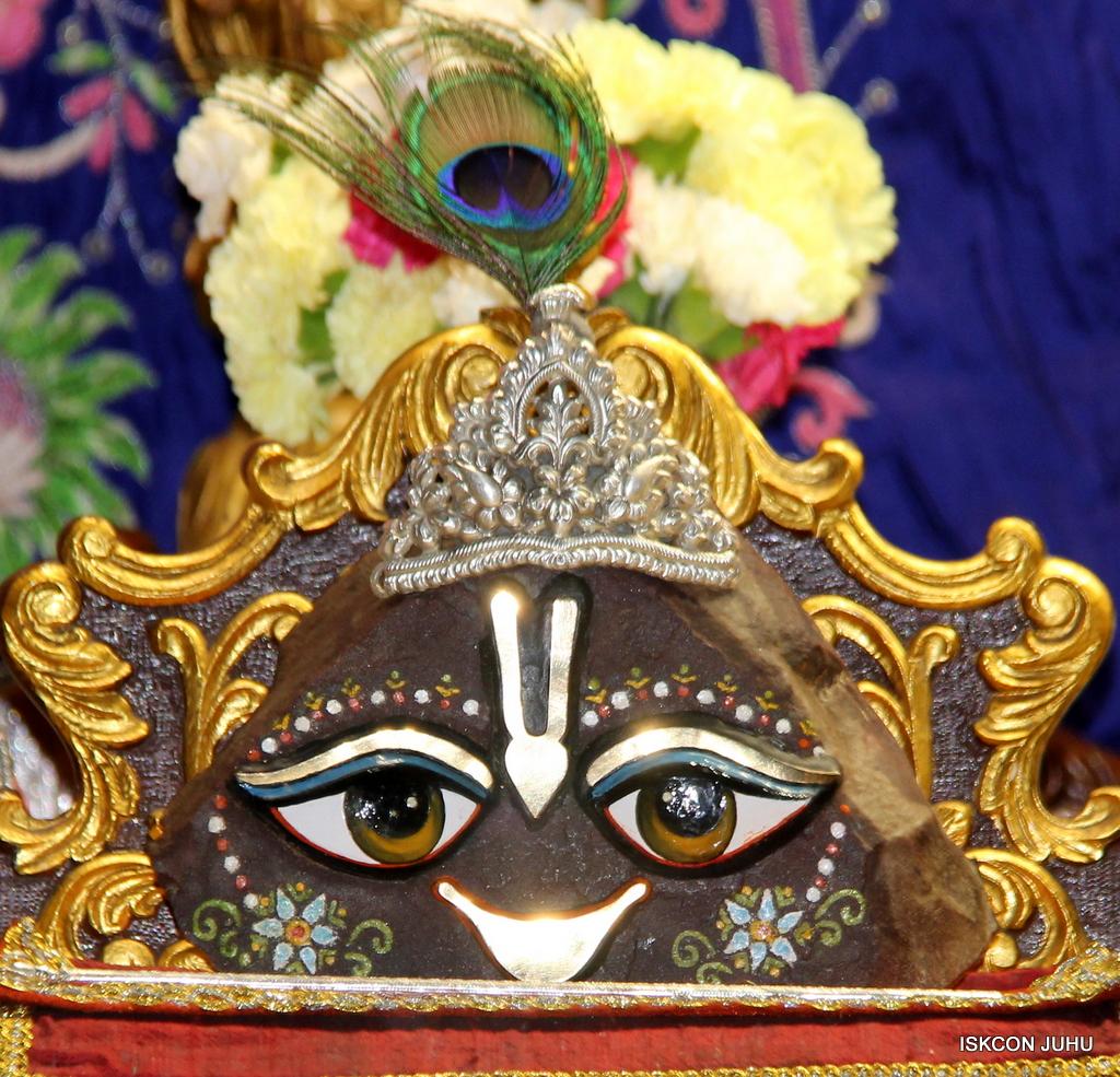 ISKCON Juhu Mangal Deity Darshan on 30th Sep 2016 (22)