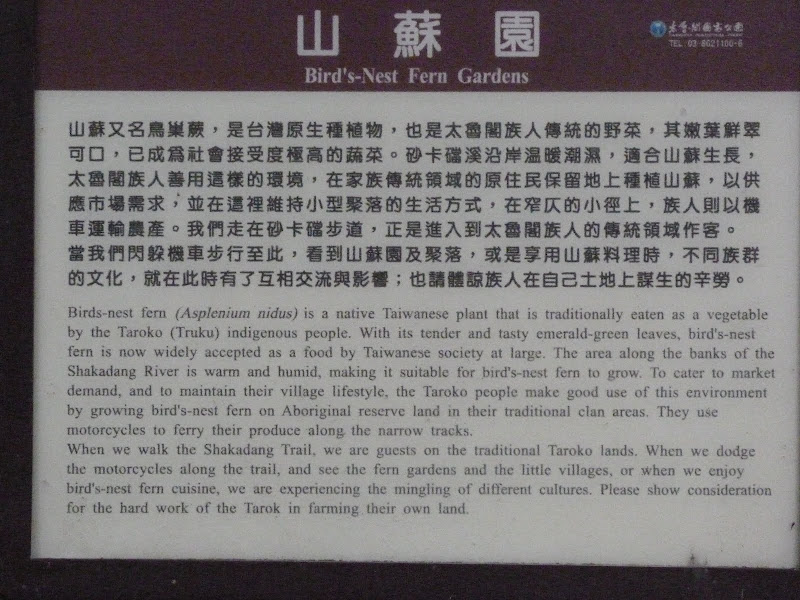 TAIWAN Dans la region de Hualien. Liyu lake.Un weekend chez Monet garden et alentours - P1010730.JPG