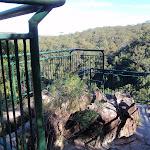 Piles Creek lookout (53342)