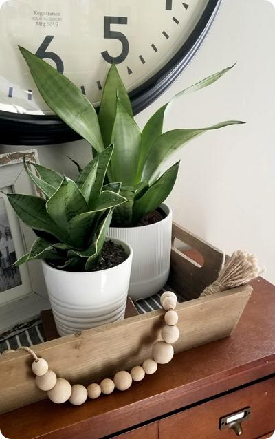 ikea plants