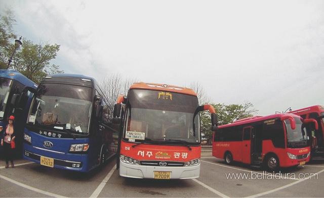 pengangkutan ke korea, bas korea