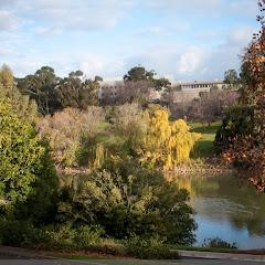 2010 06 13 Flinders University - IMG_1360.jpg